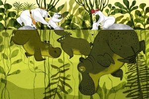 katerina portfolio hippos bear REDUCED