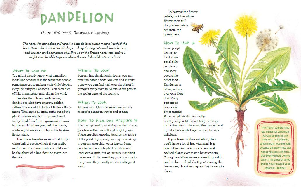 WEEDS INSIDES SCRIBBLE 4