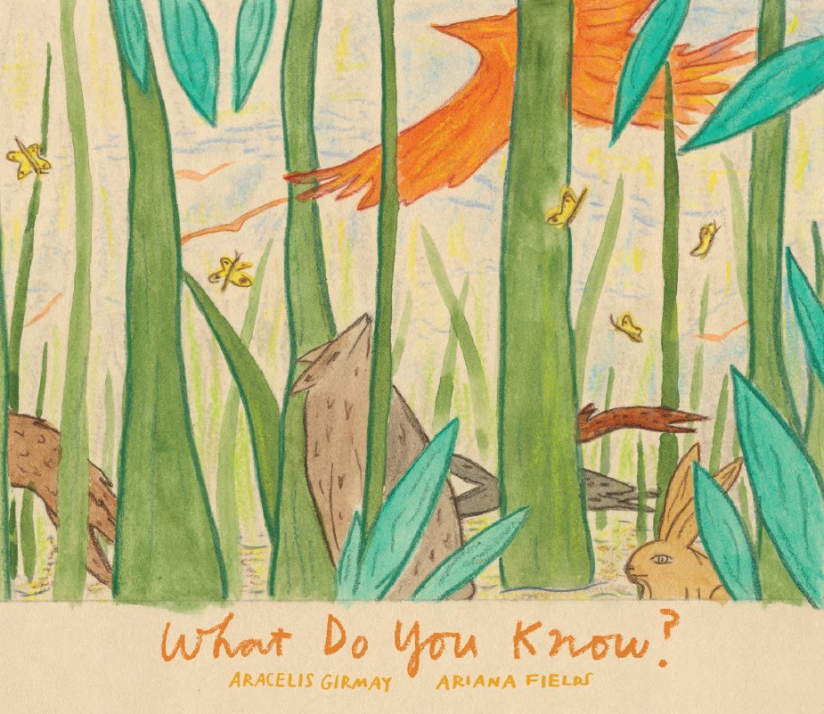 WHAT DO YOU KNOW COVER